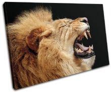 Lion Roar Wild Animals - 13-1393(00B)-SG32-LO
